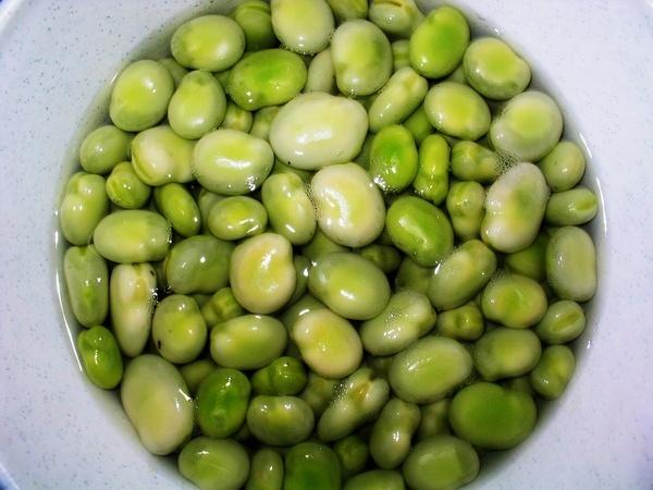 Broad Beans by samwellb
