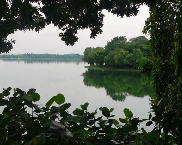 Window onto the lake by KangaGal