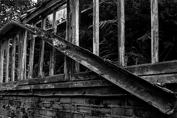 Greenhead Conservatory 1 by RipleyExile