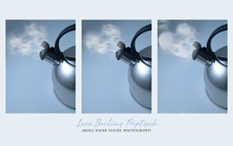 Love Boiling Triptych