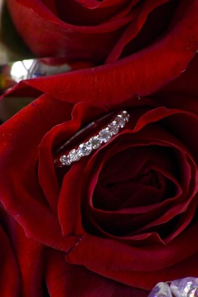 rings by Farris