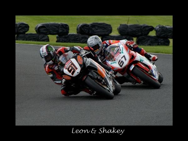 Leon & Shakey by alwolf