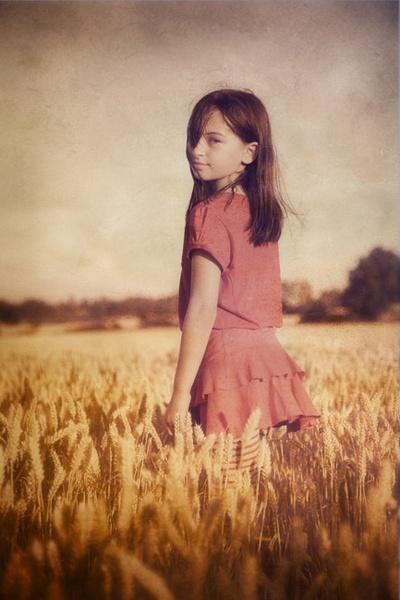 Field of Dreams by davidturner