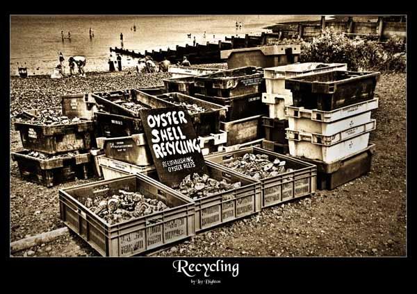 Recycle! by leedighton