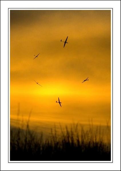 Sunset Gliders by ianjones277