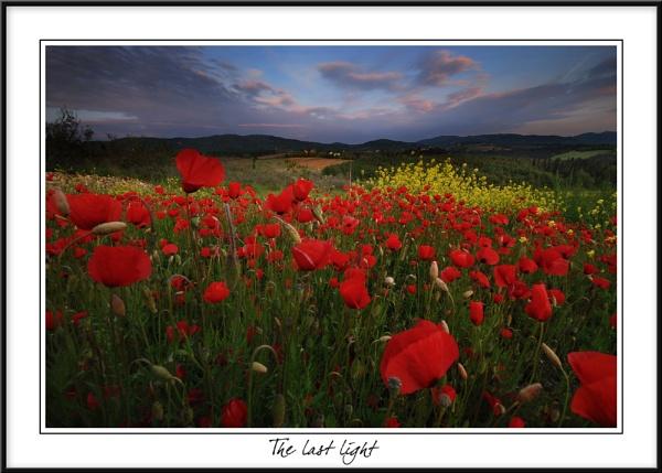 The last light by rusmi