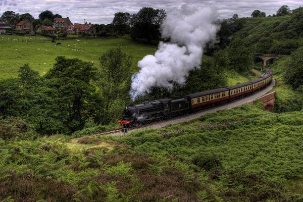 Glorious Steam by photodocktor