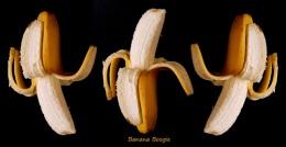 Banana boogie...
