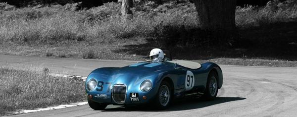Blue Jaguar by patrrick