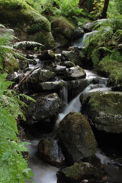 Whinlatter Waterfall by Bradfleet12