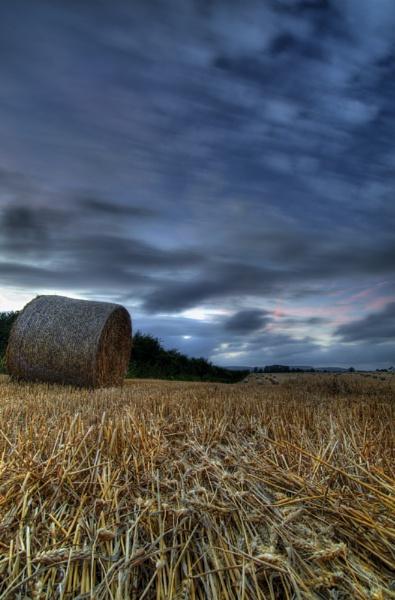 Longing for Arundel by Serkta
