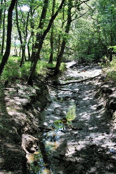 muddy creek by MGP
