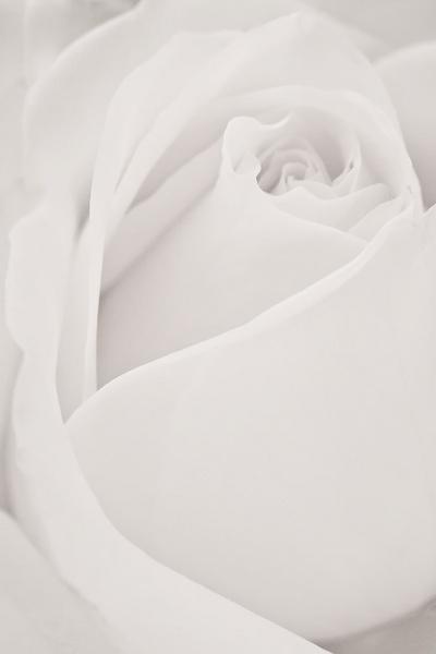 White as Snow by JamesEshmade