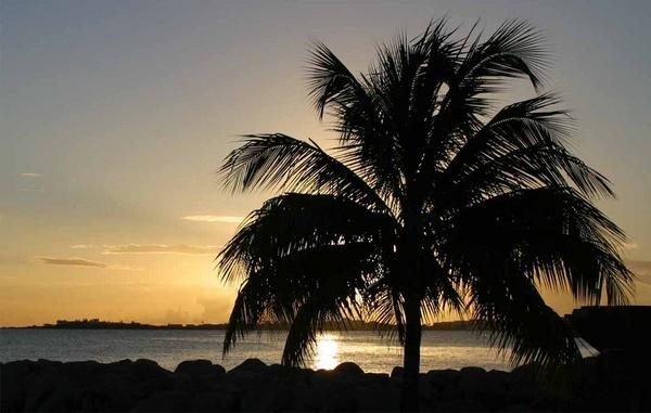 sunset by chrisg7syt