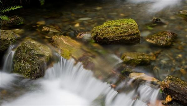 Just a stream by Steve Cribbin