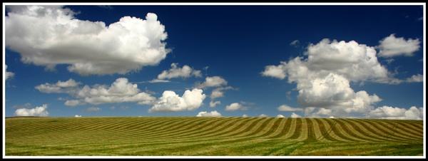 Avebury fields by jimbo_t