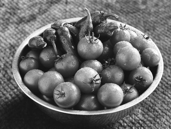 Peppers & Tomatoes by jmolligo
