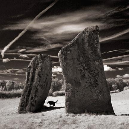 Avebury Stones by Pete