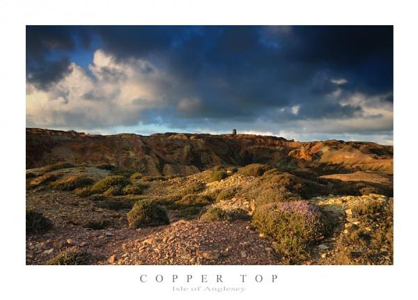 Copper Top by Alfoto