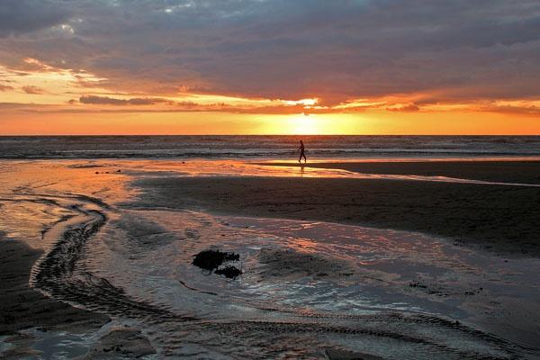 A walk on the beach by coxy