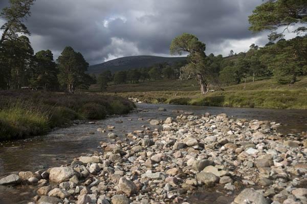 Glen Derry, Scotland by nikon_stu
