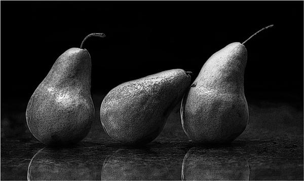 Gritty Pears III by LisaRose