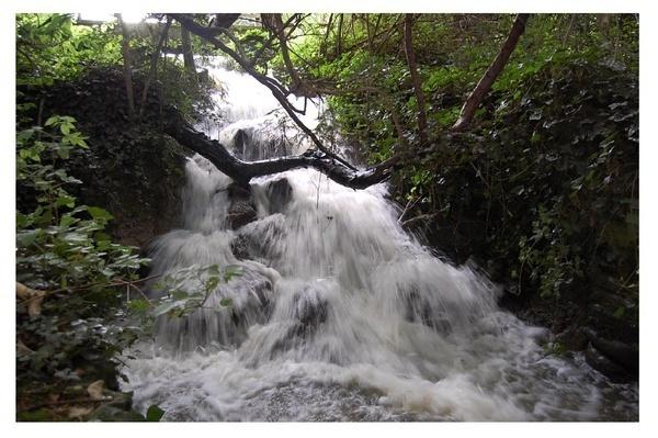 waterfall by mollye