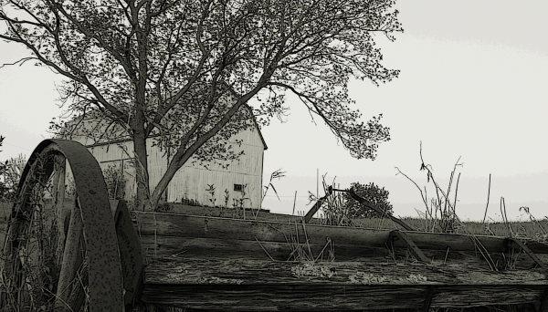 The Farm by ck_canada