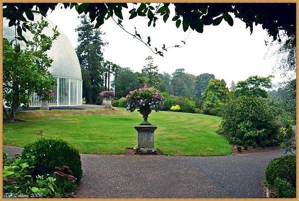 Garden Scene. by halena2