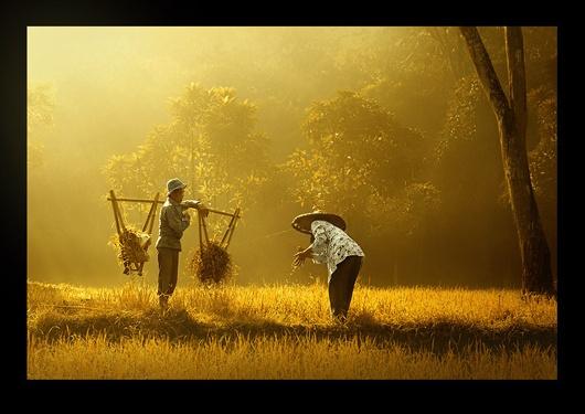 Farmer of Banten by Rarindra