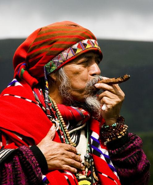 Guatemalan Elder by callinan