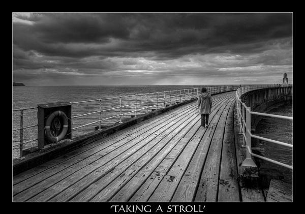 TAKING A STROLL by angej
