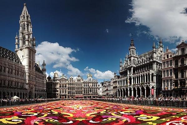 Brussels Flower Carpet by MarcPK