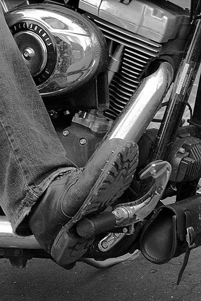 Haydons R/boot by joetcat