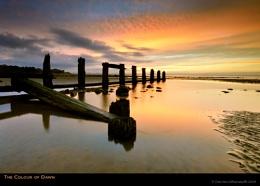 The Colour of Dawn