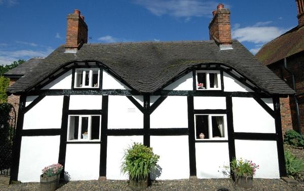 Sunny Cottage by Birdseye