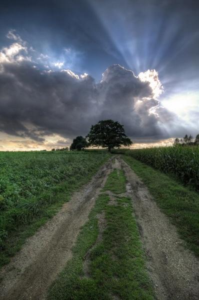 Belgian countryside by PeterK001