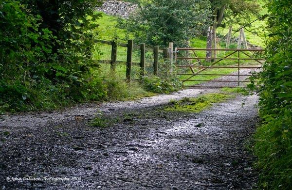 Lakeland Farm Track by JPATT