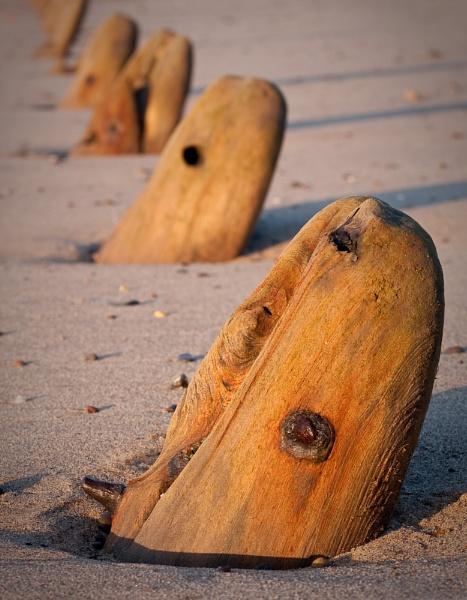 Spurn stumps by Steve Cribbin