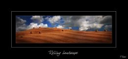 Rolling Landscape