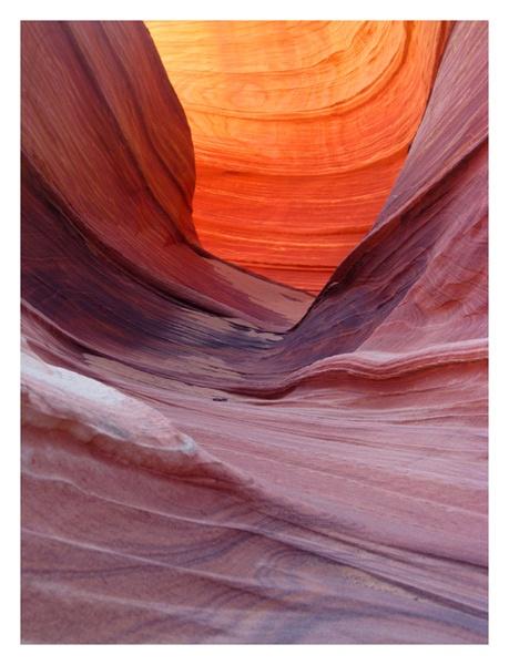 Arizona Curves by tg