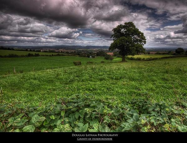 County of Herefordshire by DouglasLatham