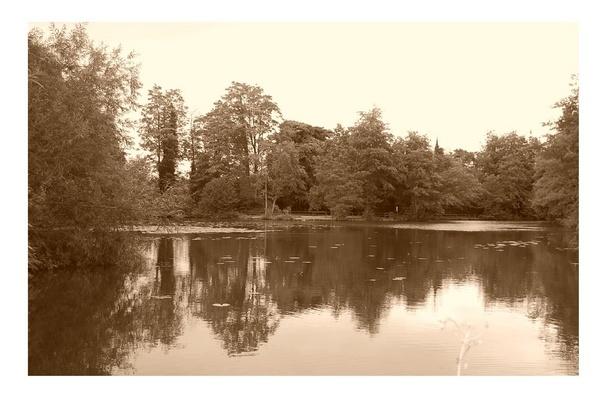 lake by mollye