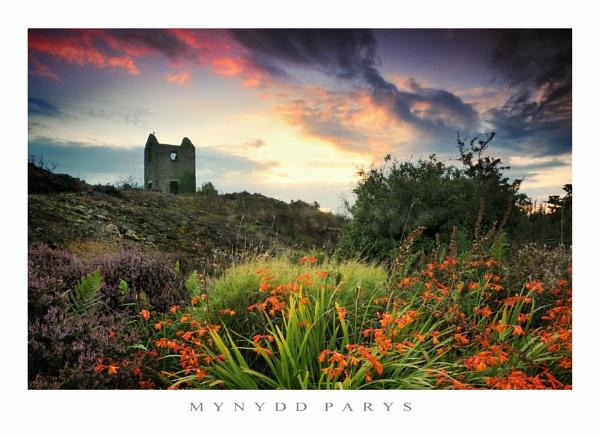 Mynydd Parys by Alfoto