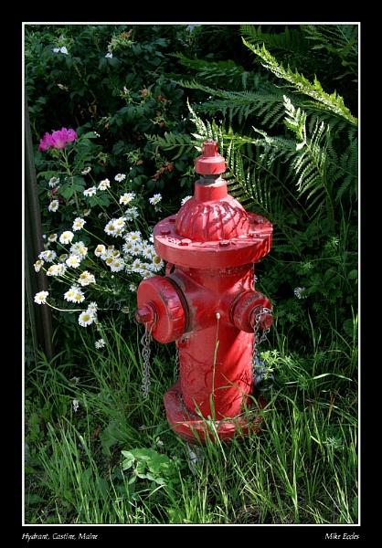 Hydrant by oldgreyheron