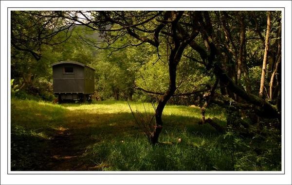 Newlands hideaway by jdenman