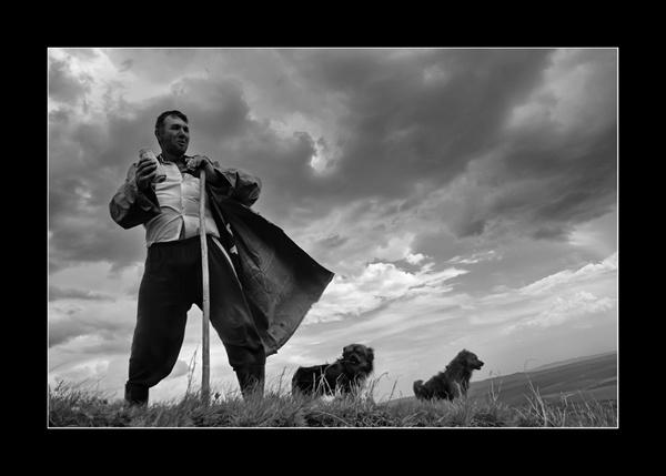 the shepard I by george_gradinaru