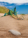 Beachware by Steve Cribbin