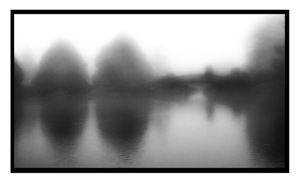 Misty Morning by delz