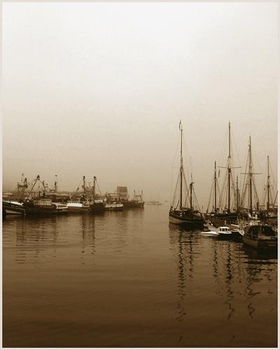 brixham harbour by shaundp